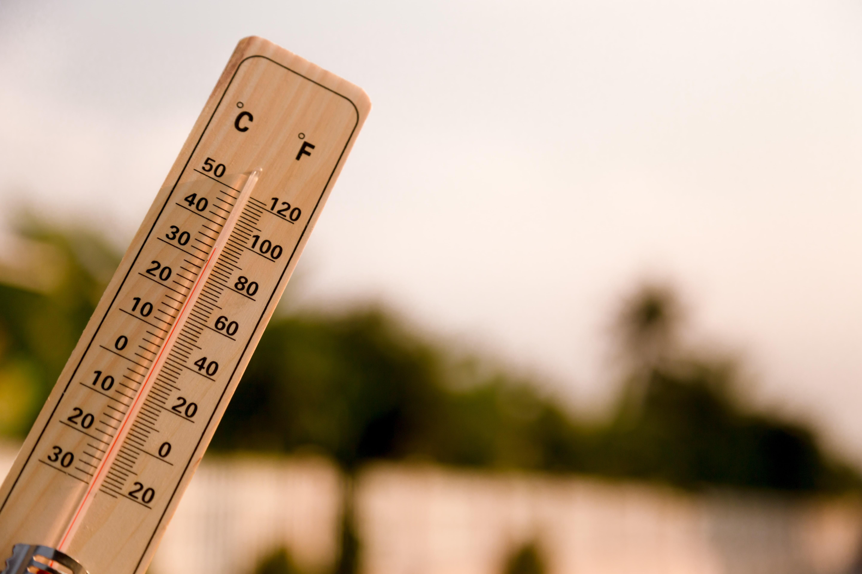 Canicule et fortes chaleurs : lancement de la veille saisonnière