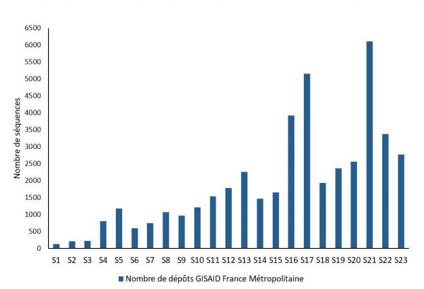 Figure dépôt GISAID séquençages S23